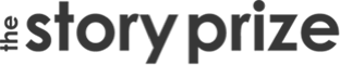 Logo the story prize 2x 1499374684