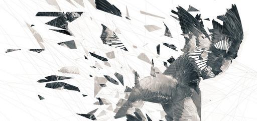 Cover Photo: Broken Wings by Ilana Masad