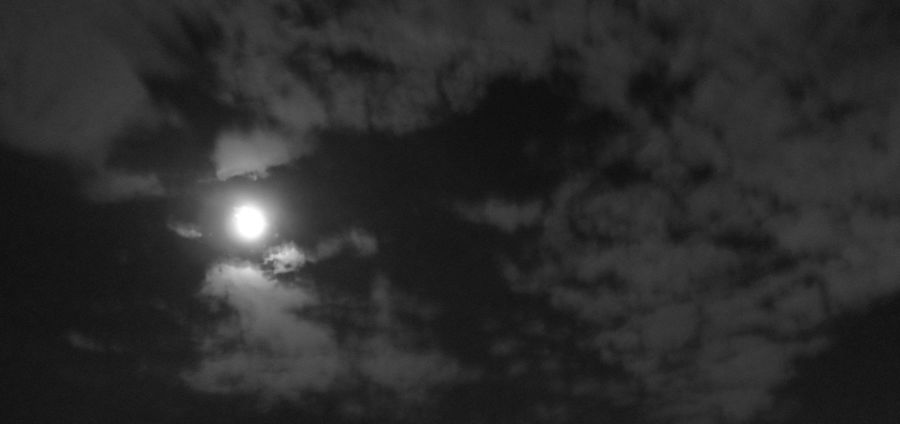 Cover Photo: Although this is not a Day Moon but the Night Moon captured.