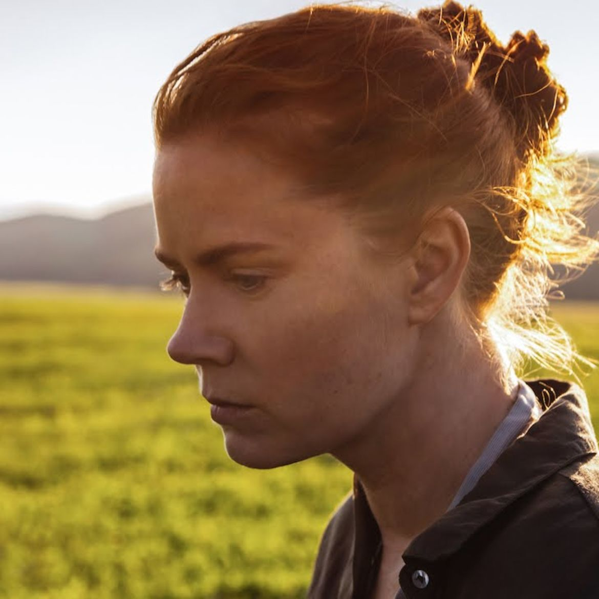 Cover Photo: Amy Adams in 'Arrival' (2016)