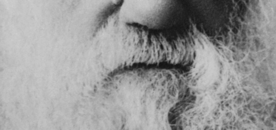 Cover Photo: Charles Darwin Selects by Chris Okum