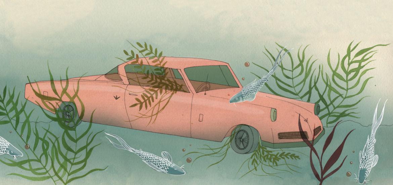 Cover Photo: Harriet Lee-Merrion